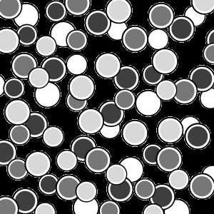 circles overlay 2 free download digital scrapbooking template