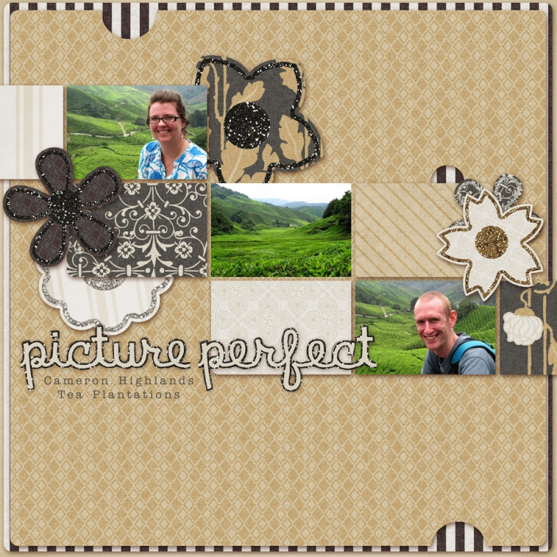 Picture perfect free download digital scrapbook page - Marisa pascual ...