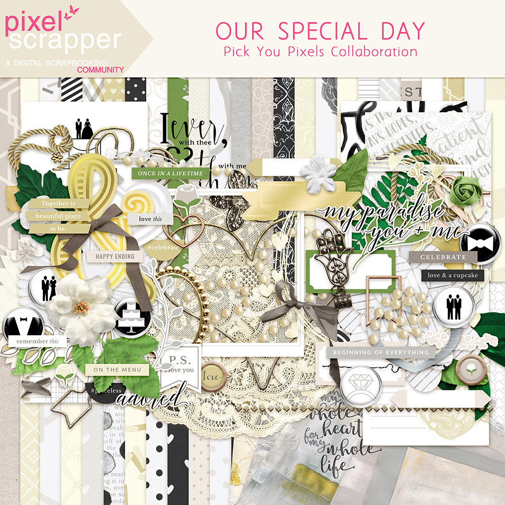 Our Special Day Bundle