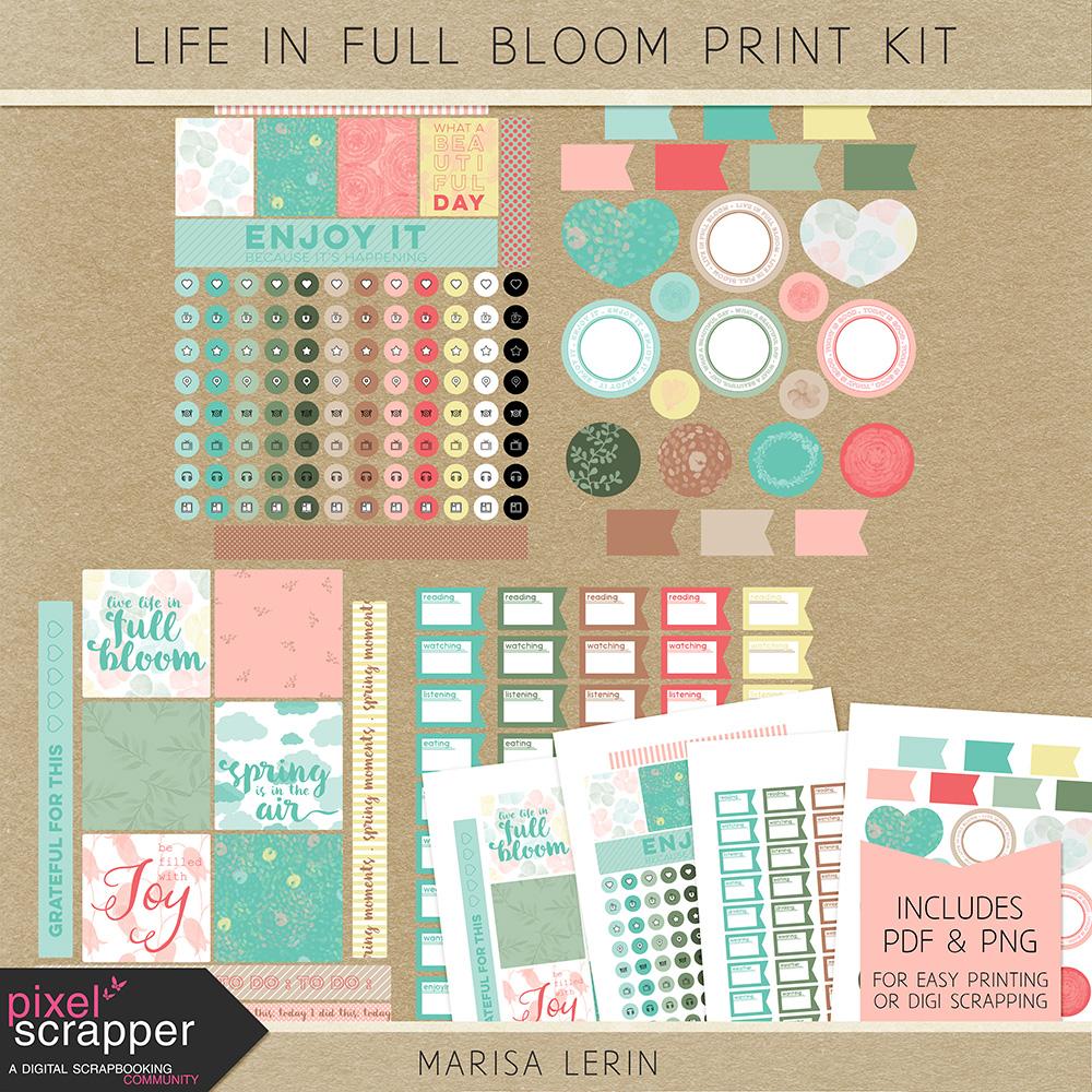 Freebie Print Kit