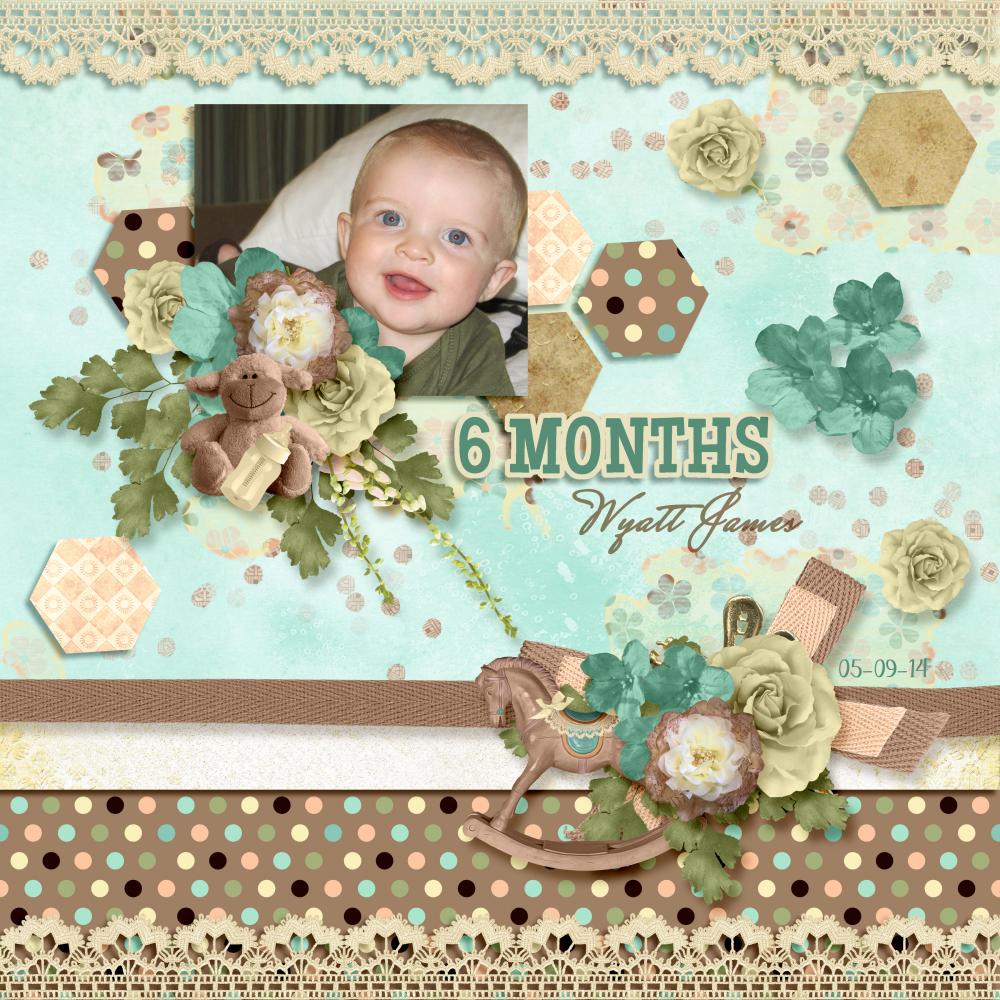 Wyatt 6 Months By Jodi Watson Pixel Scrapper Digital Scrapbooking