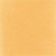 Simple Pleasures - Solid Orange Paper