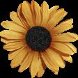 Sweet Valentine Elements Kit - Yellow Flower