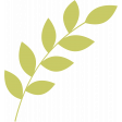 Leafy Branch Template 06
