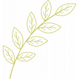 Leafy Branch Template - Outline 06