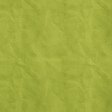 School Fun - Solid Crinkled Paper - Green