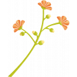 Summer Daydreams - Orange Flowers On Stem