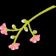 Summer Daydreams - Pink Flower On Stem