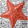 Summer Daydreams - Star - Red