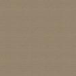 Outdoor Adventures - Solid Paper - Light Brown