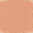 Ourdoor Adventures - Gingham Paper - Red/Orange