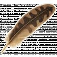 Outdoor Adventures - Brown Feather