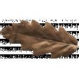 Outdoor Adventures - Little Leaf - Brown