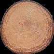 Outdoor Adventures - Log Wood Chip