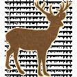 Outdoor Adventures Deer Silhouette