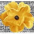 Outdoor Adventures - Yellow Flower