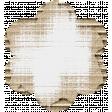 Footsteps Cardboard Flower - White