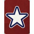USA Journal Card 06