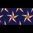 USA Stars Ribbon