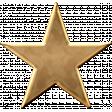 USA Gold Star 1