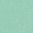 Challenged Solid Paper - Seafoam - Embossed