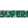 Challenged Word Art - Super