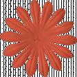 Change Flower - Orange