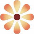 Change Flower - Varigated