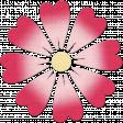 Change Flower - Red Varigated