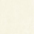 Stripes 54 - White
