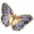 Distressed Butterfly Ephemera 01