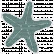 Coastal Starfish - Teal