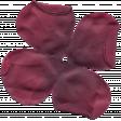 Flower 042