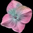 Garden Party Silk Flower - Pink & Blue
