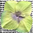 Garden Party Silk Flower - Green