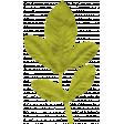 Garden Party Leaf 023