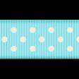Medium Ribbon - Polka Dots 01 - Aqua & White
