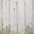 Veggie Patch - Wood Texture Paper