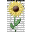 At The Farm - Felt Sunflower 1