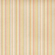 Oh Baby Baby - Multi Stripes Paper