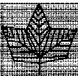 Autumn Art - Maple Leaf Stamp