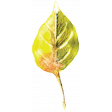 Autumn Art - Watercolour Leaf 3