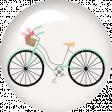 Ride A Bike - Brad- Bicycle 1