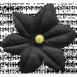At The Fair - Black Flower