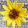 Cast A Spell Elements - Sun Flower