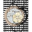Buried Treasures - Flower Cluster