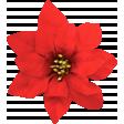 Christmas Memories Poinsettia