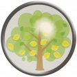 Sunshine and Lemons - Lemon Tree Brad