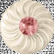 Oh Baby Pink Gem Button