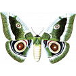 Many Thanks - Green Butterfly